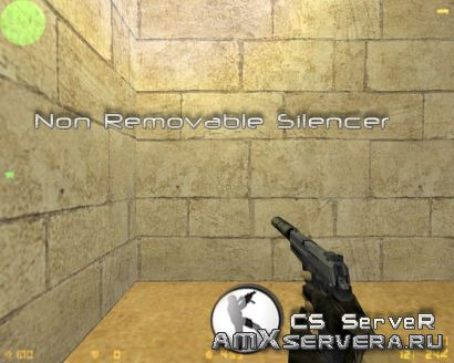 Non Removable Silencer